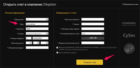 Новая методика заработка в Интернете: бинарные опционы с 24option
