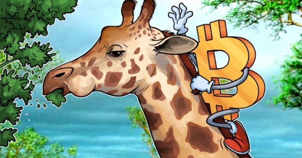 Биткоин в африке русскоязычная биткоин биржа