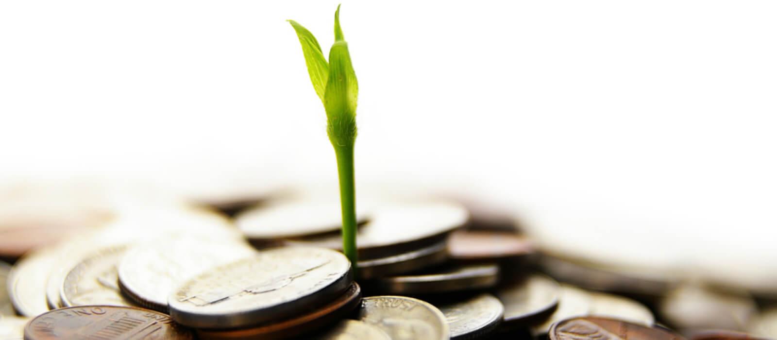 Институциональные деньги помогут воспрять духом всему сектору