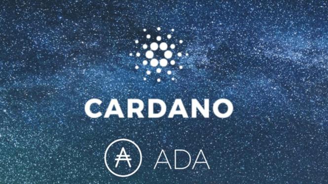 Cardano (ADA): история о том, как маленький твит привел к росту криптовалюты