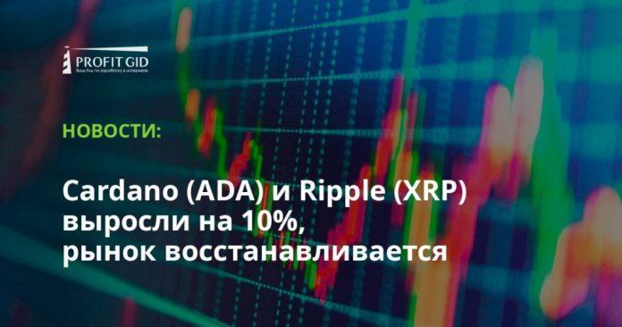 Cardano (ADA) и Ripple (XRP) выросли на 10%, рынок восстанавливается