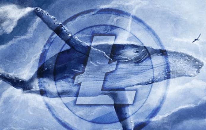 Крипто-кит теперь владеет 15% Litecoin