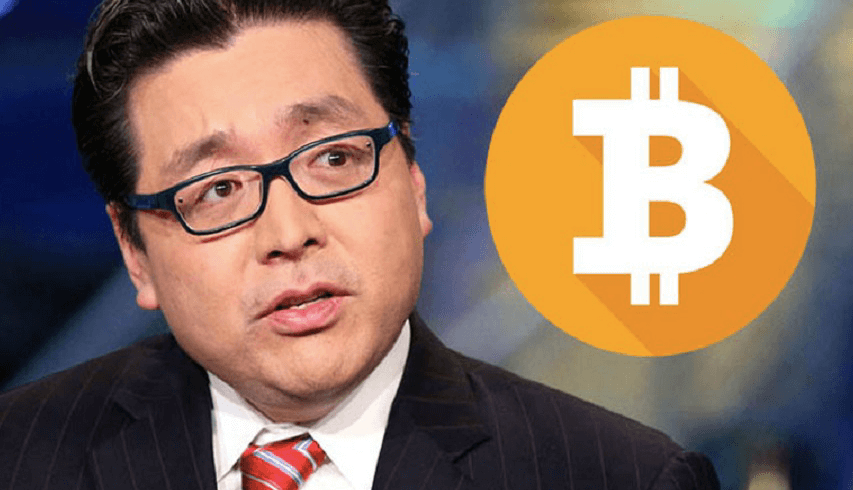 Том Ли: Bitcoin выйдет на DMA200 к августу 2019 года