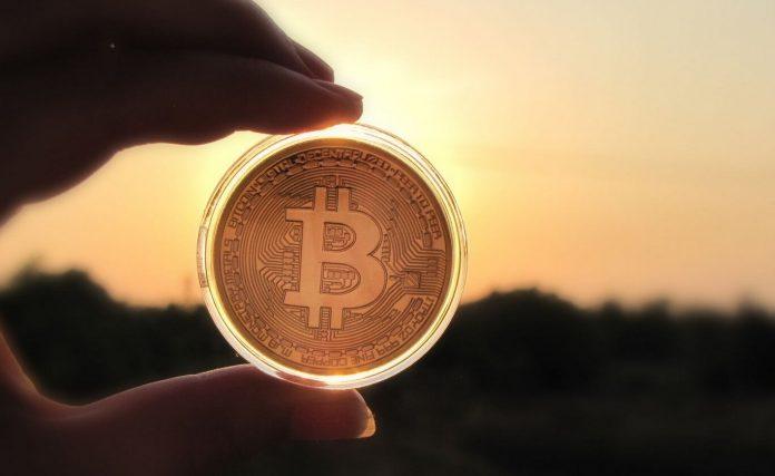 Chainalysis: лишь 1,3% всех Bitcoin-транзакций в 2019 году использовались для оплаты товаров или услуг