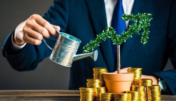 В какую криптовалюту вкладывать