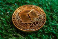 Криптовалюта NEO - обзор и прогнозы